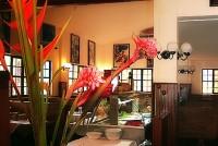 Playas del Coco restaurants costa rica attractions