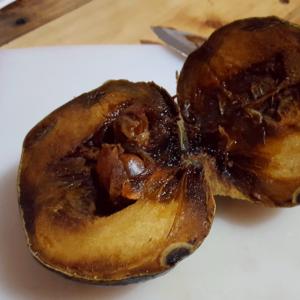 Black Sapote Exotic Fruits Costa Rica