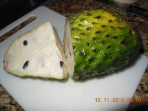 Guanabana Soursop exotic fruits Costa Rica